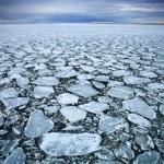 Drift ice — Stock Photo