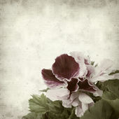 Textured old paper background — Stock Photo