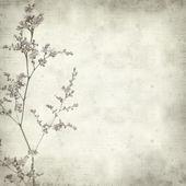 Texturerat gamla papper bakgrund — Stockfoto