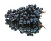 Black grapes isolated — Stock Photo