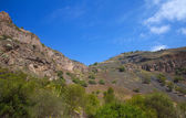 Gran Canaria, Caldera de Bandama — Stock Photo