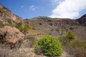 Gran Canaria, Caldera de Bandama, abandoned farm — Stock Photo