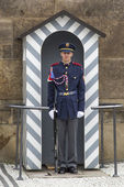 Soldier in front of the Prague Castle — Foto de Stock