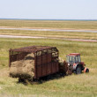Stock Photo: Tractor with hay