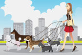 Woman walking dogs — Stock Vector