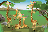 Family of Giraffes — Stock Vector