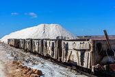 Trailer for salt — Stock Photo