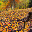 Autumn Peace — Stock Photo