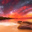 Stunning Tropical Sunset — Stock Photo