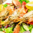 Shrimps on a plate - Stock fotografie