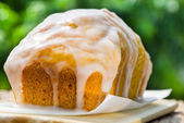 Sweetened Vanilla Custard Cake — Stock Photo
