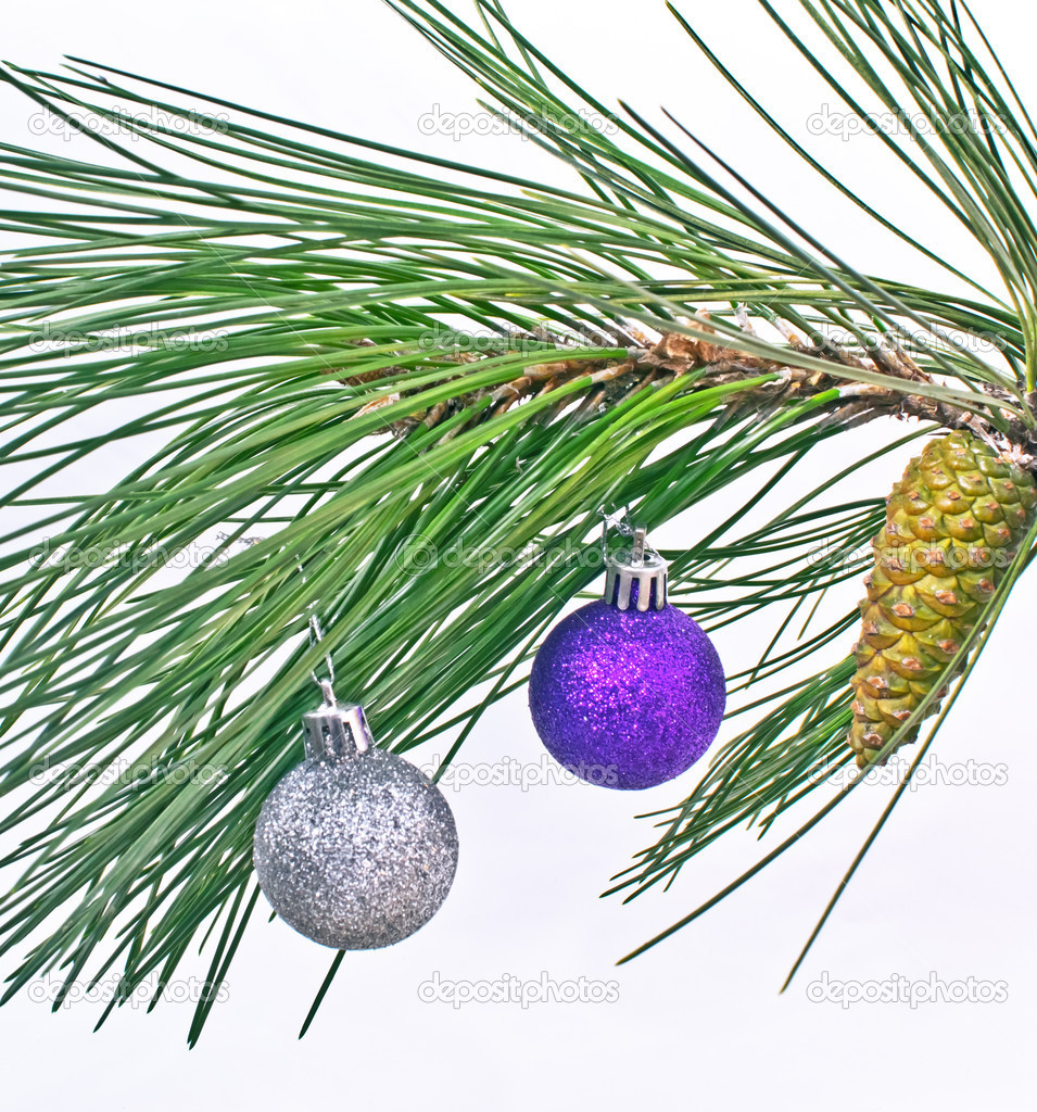 Christmas ball on pine fir tree branches isolated on white  Stock Photo #14090787