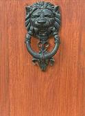 Door Knocker Lion Head architect detail — Stock Photo