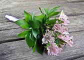 Wedding bouquet on vintage old wood — Stock Photo