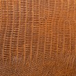 Leather texture closeup — Stock Photo #40506473