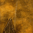 Leather texture closeup — Stock Photo #40506791