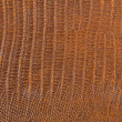 Leather texture closeup — Stock Photo #40506849
