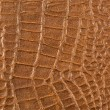 Leather texture closeup — Stock Photo #40506859