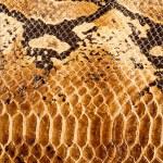 Leather texture closeup — Stock Photo #40507125