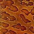 Leather texture closeup — Stock Photo #40507205
