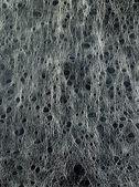 Leather texture closeup — Stock Photo