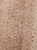 Leather texture closeup — Stock Photo
