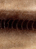 Cuero textura closeup — Foto de Stock