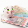 Ukrainian money and piggy bank — Foto de Stock