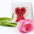 Fresh tender pink tulip with post card — Stock Photo