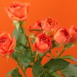 Stock Photo: Tender natural roses