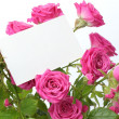 Greeting card with roses — ストック写真