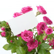 Greeting card with roses — Stock fotografie