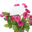Greeting card with roses — Photo
