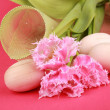 Pink tulips and wooden eggs — Stock Photo #21537303