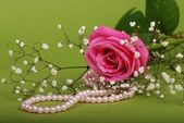Pearl necklace with pink rose — Stock Photo