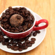 Cup with coffee beans and chocolate cake — Lizenzfreies Foto