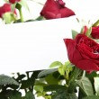 Stock Photo: Red roses with card