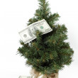 Christmas tree dotted with American dollars — Stock Photo