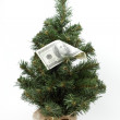 Christmas tree decorated with money — Stock Photo