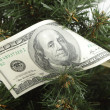 Christmas tree decorated with dollars — Stock Photo