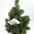 One hundred dollars bill on a Christmas tree — Stock Photo