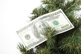 Dollar banknote hanging on Christmas tree — Stock Photo