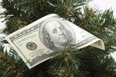 Julgran dekorerad med dollar — Stockfoto