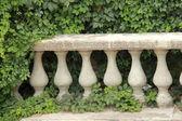 アンティーク グリーン アイビーに石の花瓶の手すり — ストック写真