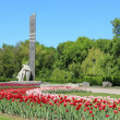 Постер, плакат: Field of tulips over monument of glory Ukraine Poltava