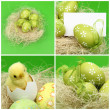 Decorative Easter eggs Greeting card for the Easter theme — Foto de Stock