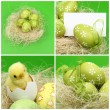Decorative Easter eggs Greeting card for the Easter theme — Stok fotoğraf