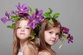 European two little girls with beautiful hair styles with fresh purple clematis on gray background — Zdjęcie stockowe