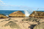 Large rocks in the bay in summer sunny day — Stock Photo