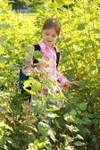 Adorable little schoolgirl — Stock Photo